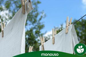 Welches ist der beste Wäschebleicher?